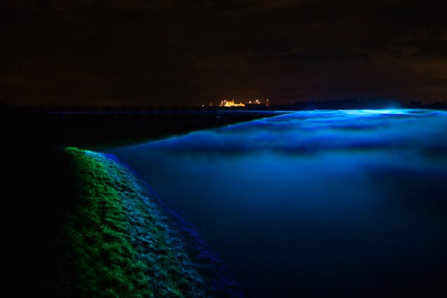 A Catastrophic Flood Faked With LED Trickery