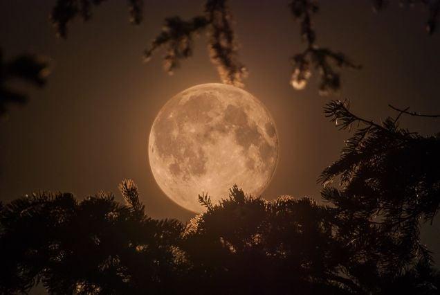 19 Stunning Photos of 2014's Biggest, Most Beautiful Moon So Far