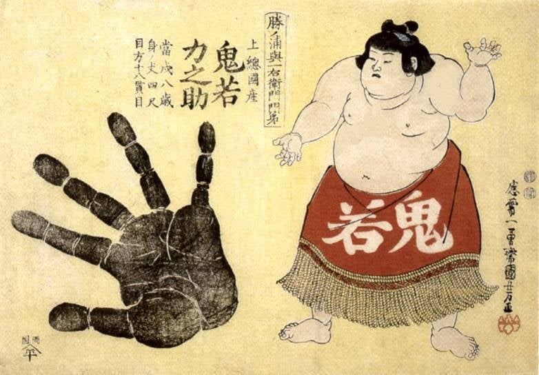 Weird science: finger length may reveal a Sumo champion!