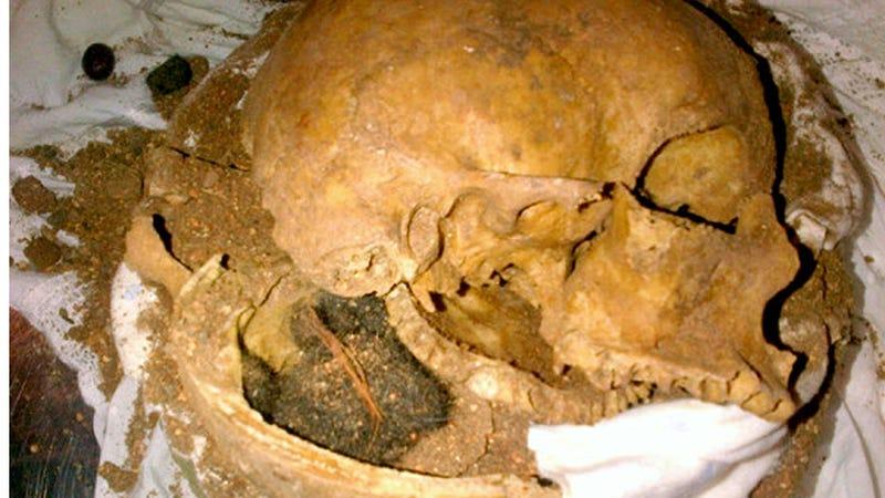 The TSA Found Human Skull Fragments Inside a Clay Pot