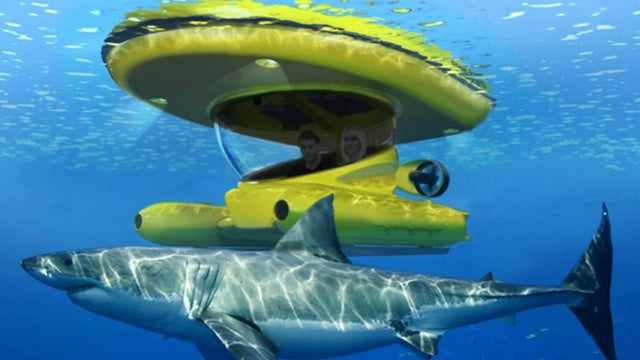 An Underwater Viewing Craft For the Rich Beatle Lover