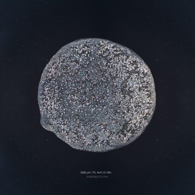 The Beautiful Secrets of Tears, Revealed By a Microscope