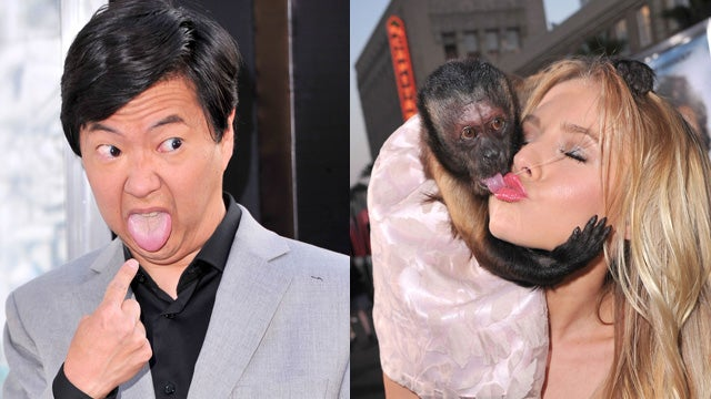 Monkey Wins Best-Dressed At The Hangover II Premiere