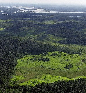 Remains of a 1500-Year-Old City Uncovered in Amazonian Jungle