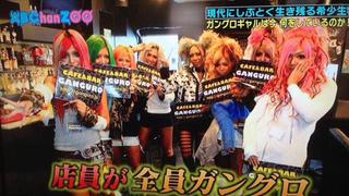 """Tokyo's Newest Tourist Destination Promises a """"Crazy Experience"""""""