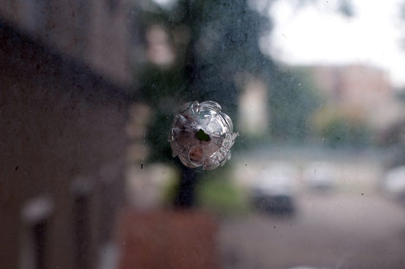 Florida Woman Hit by Bullet After Neighbor Shoots Himself in the Head