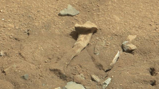 """Alien Thigh Bone"" Found on Mars Is Just a Rock"