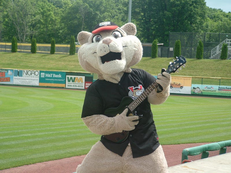 """Waitress Says Minor Leaguer Groped Her, Actually Said """"Do You Know Who I Am? I Play For The ValleyCats"""""""