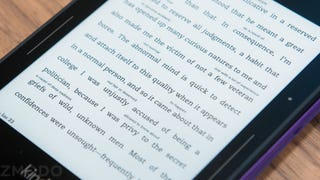 95 percent of American public libraries now carry ebooks