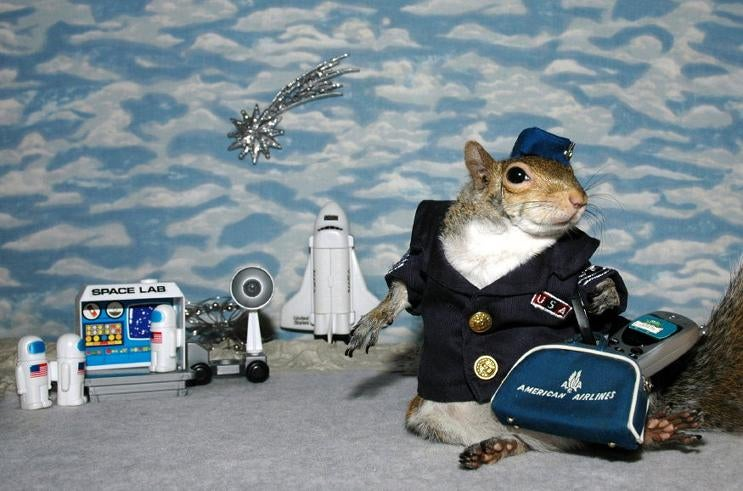 Need a Break From iPhone SDK News? Here's a Squirrel Dressed Like a Spaceman