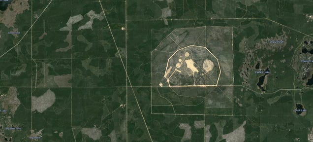 Why 20,000 Bombs a Year Are Dropped in This National Forest in Florida