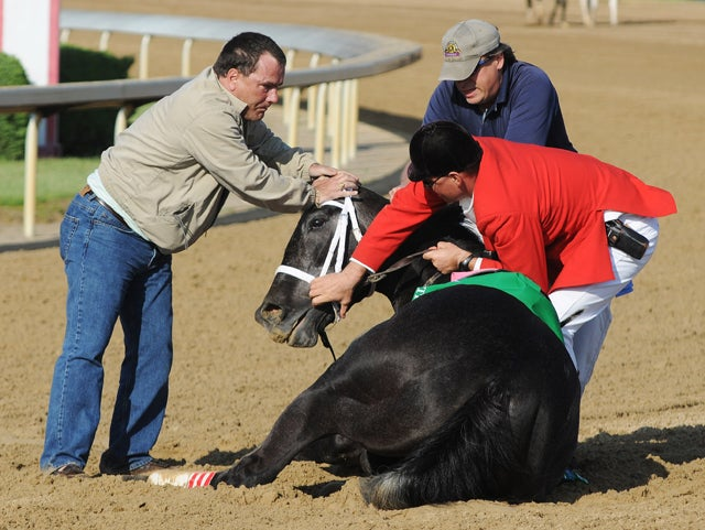 HBO Unable To Film TV Show About Horse Racing Without Horses Dying