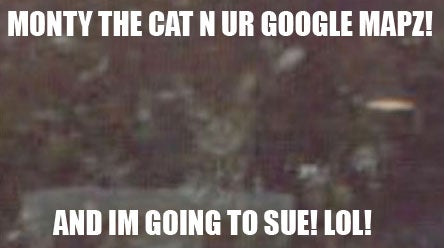 Google Street View Invades Cat's Privacy