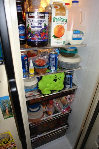 Refrigerignorance: America's Plague