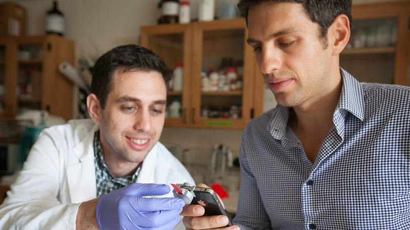 Could a Smartphone Cholesterol Sensor Convince You Not to Supersize?
