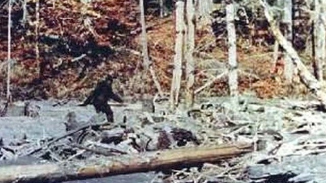 You Should Read This Before You Go Bigfoot Hunting