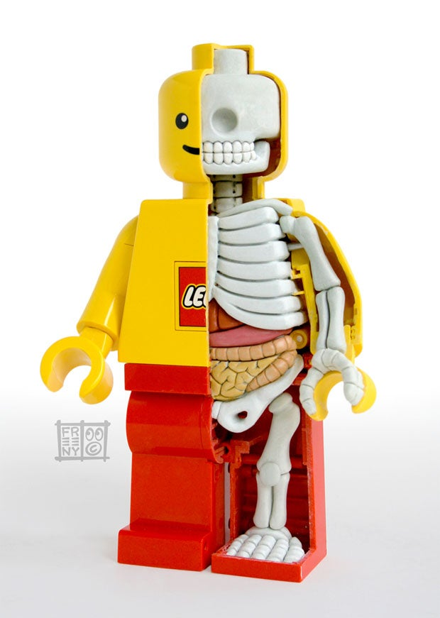 Even the Guts and Skeleton of a LEGO Figure Looks Cute