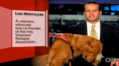 An Iraq Vet, His Dog and an Unraveling War Story