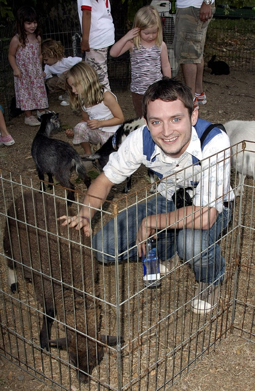 Elijah Wood: Feeling Sheepish
