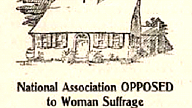 Old Timey Organization Warns That Ladyvoting Will Lead to Alcoholic Cravings, 'Petticoat Rule'
