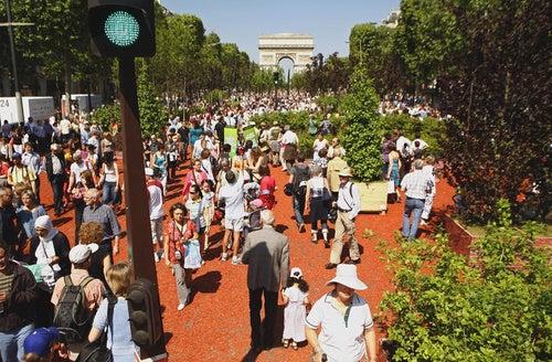 French Turn Champs Elysees into Farmland