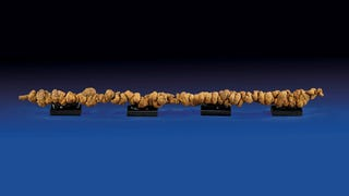 "$10,000 ""World's Longest Dinosaur Poop"" Is Probably Just a Rock"