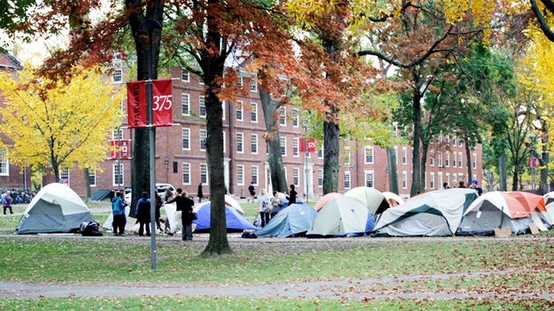 To Occupy Harvard, You Need a Valid Harvard ID