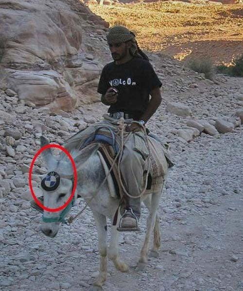 BMW: The Ultimate Donkey Machine