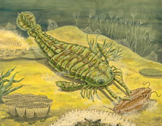 If you go back in time, don't fear the giant sea scorpions