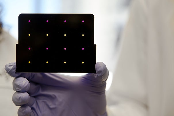 This Piece of Paper Can Diagnose Zika Incredibly Fast