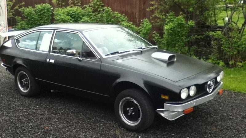 For $5,000 is this an Alfa dog?