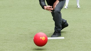 Adult Kickball Team Email: Please Don't Fuck Your Teammates Yet