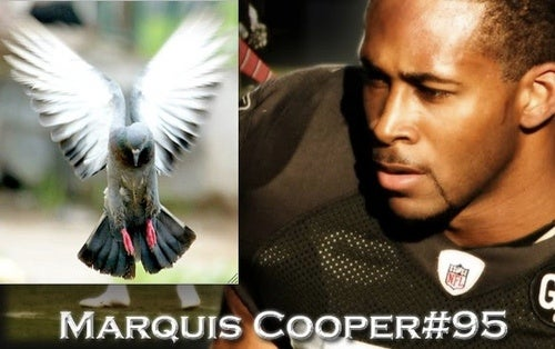 Justin Fargas Has A Theory About That Special Teams Pigeon