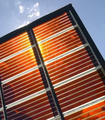 Inventor of Photosynthesis-Based Solar Cells Wins Millennium Tech Prize
