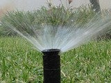 Water Effectively by Calibrating Your Sprinklers