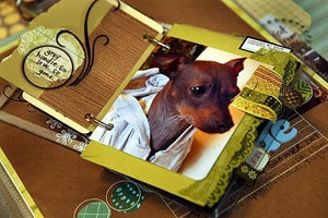 Scrapbooking Rock Star Victim Of Scrappy Smackdown