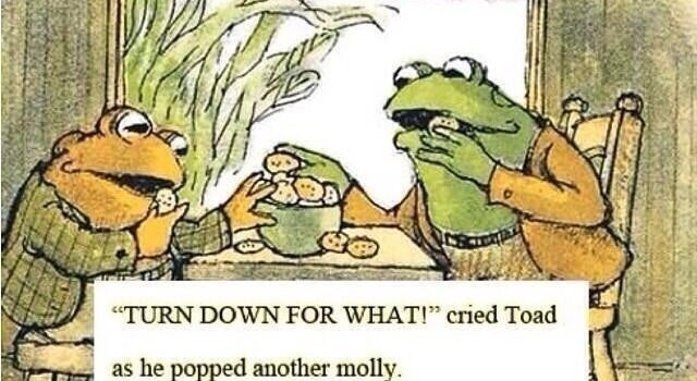 Toad turns down