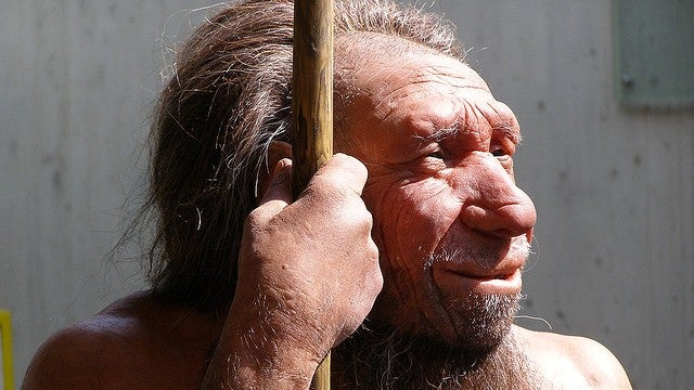 The extinction of Neanderthals had nothing to do with us