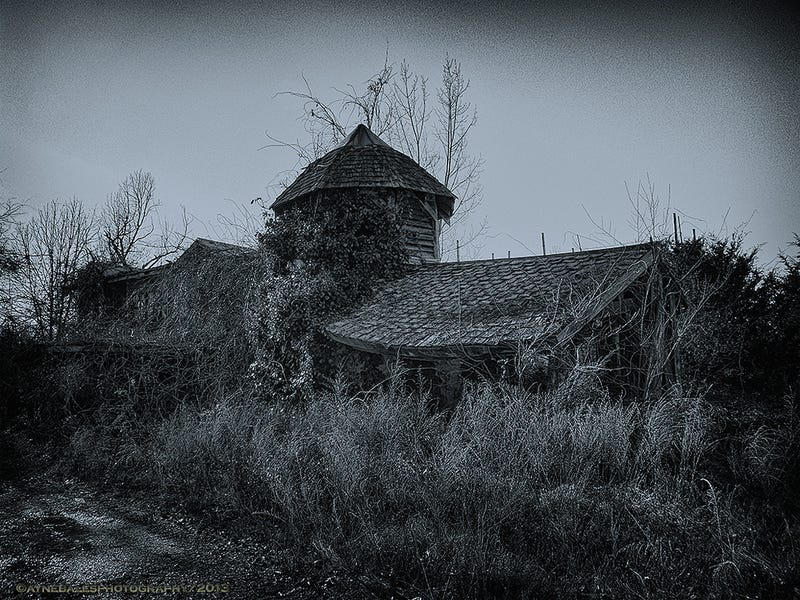 The Haunting Remains of the Virginia Renaissance Faire