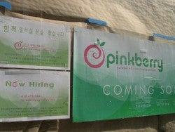 Fifth Pinkberry! Near Columbia!