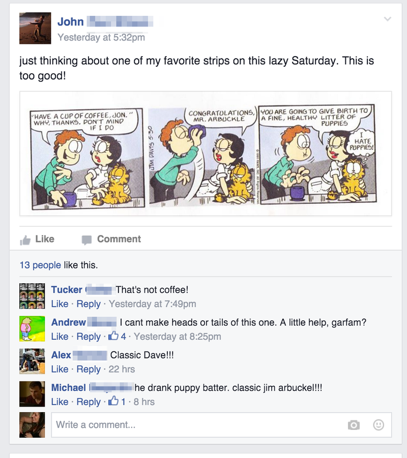 This Private Garfield Facebook Group Is the Last Irony-Free Place on the Internet