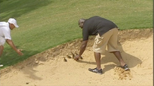 Leonard Davis Saves Adorable Baby Ducks From Being Covered In Sand. Holla.