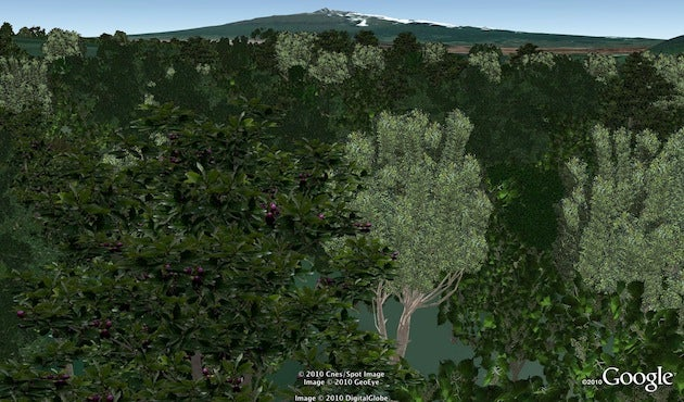 Google Earth Now Has 80 Million Beautiful Trees
