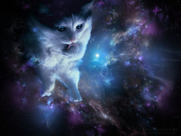 Space Cats — Magic Fly.