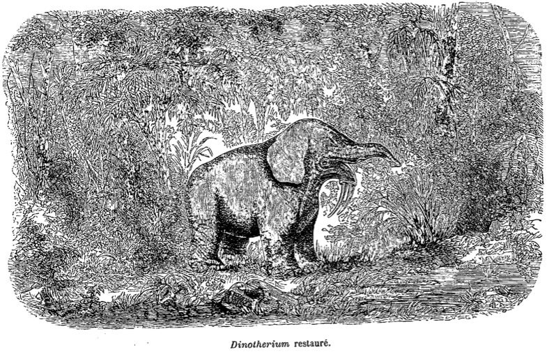 Strange 19th Century Drawings of Dinosaurs and Other Extinct Animals