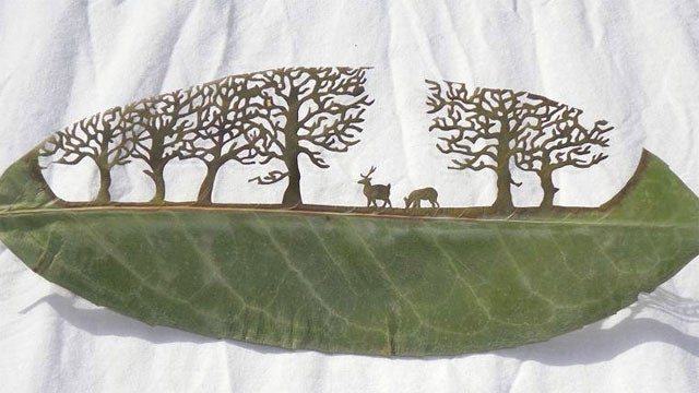 Cutaway Leaf Art Dazzles With Detail