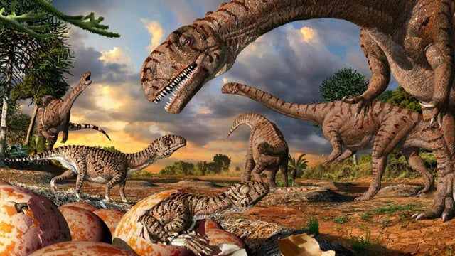 "Did dinosaurs produce ""milk"" for their young?"