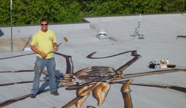 Hooray, an optical illusion of a building filled with giant spiders
