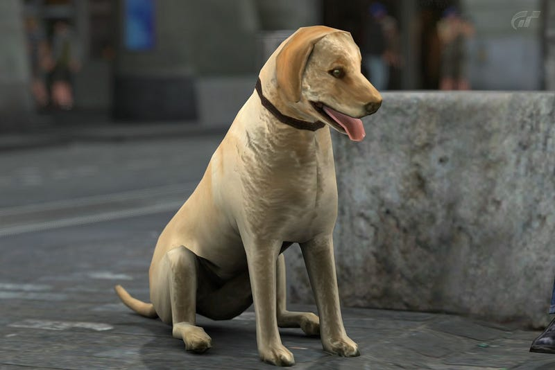 This Gran Turismo 5 Dog Finishes In Last Place