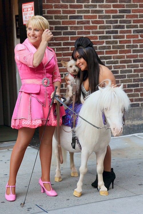 Have You Heard The One About Snooki, A Terrier & A Miniature Pony?